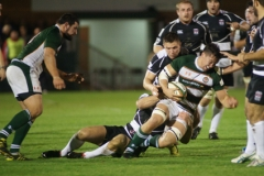Ealing Trailfinders v Moseley 01/11/2013